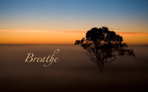 Breathe-Tree-in-the-Mist-1280x800